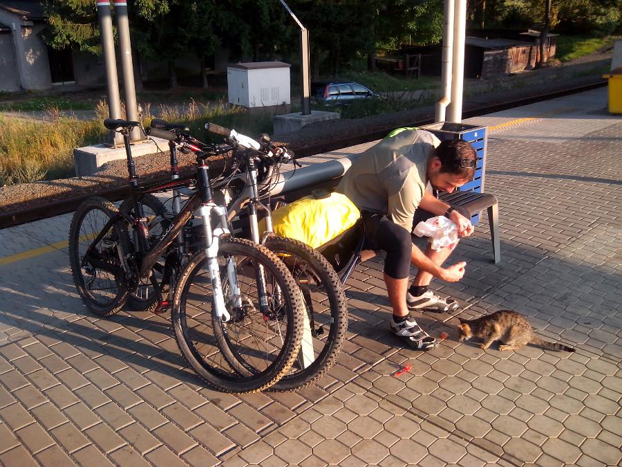 Jan krmí kočku na nádraží.